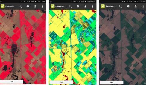 Conocé la app Sentinel-2 NDVI Maps