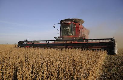 Cómo seguirá la cosecha en las distintas zonas agrícolas